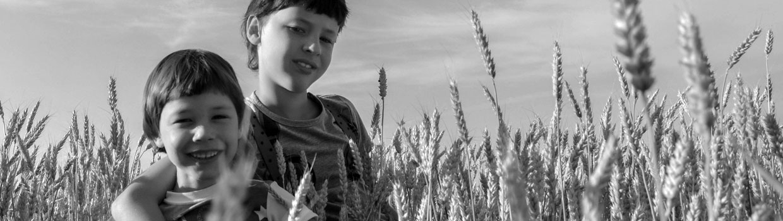 Edukere - Mediación familiar y educativa en Logroño